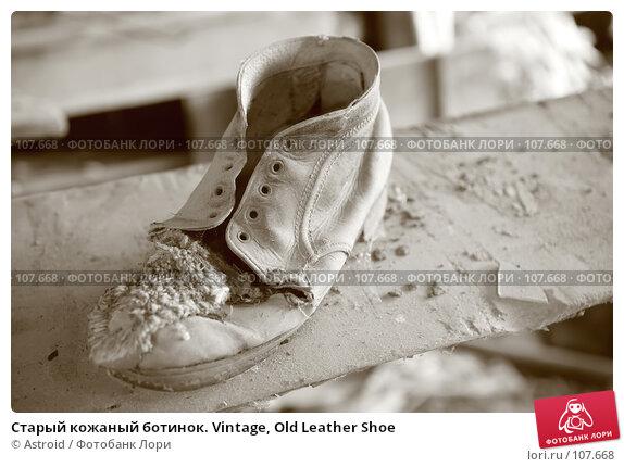 Купить «Старый кожаный ботинок. Vintage, Old Leather Shoe», фото № 107668, снято 27 августа 2007 г. (c) Astroid / Фотобанк Лори