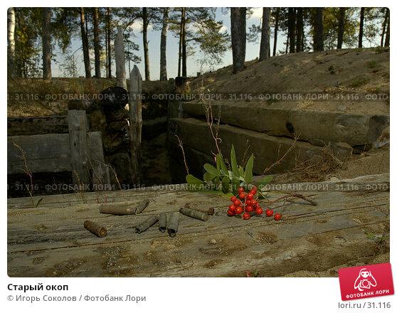 Старый окоп, фото № 31116, снято 30 апреля 2017 г. (c) Игорь Соколов / Фотобанк Лори