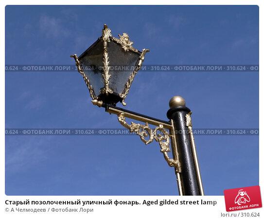 Старый позолоченный уличный фонарь. Aged gilded street lamp, фото № 310624, снято 18 сентября 2006 г. (c) A Челмодеев / Фотобанк Лори