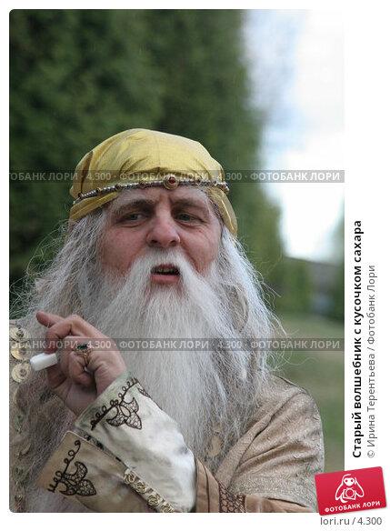 Старый волшебник с кусочком сахара, фото № 4300, снято 8 мая 2006 г. (c) Ирина Терентьева / Фотобанк Лори