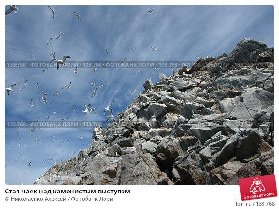 Стая чаек над каменистым выступом, фото № 133768, снято 27 июня 2006 г. (c) Николаенко Алексей / Фотобанк Лори