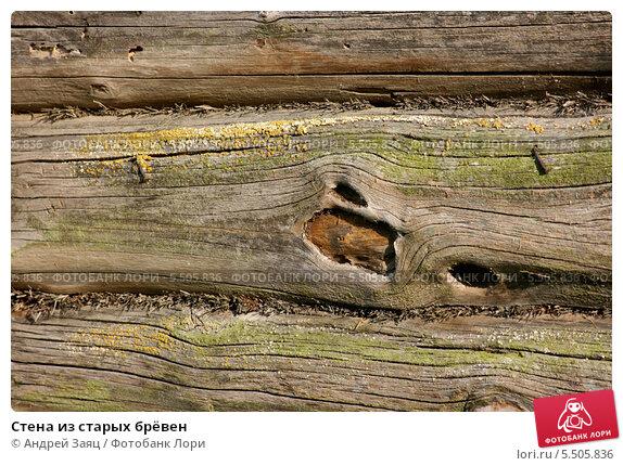 Стена из старых брёвен. Стоковое фото, фотограф Андрей Заяц / Фотобанк Лори