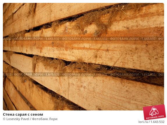 Купить «Стена сарая с сеном», фото № 1643532, снято 10 ноября 2009 г. (c) Losevsky Pavel / Фотобанк Лори
