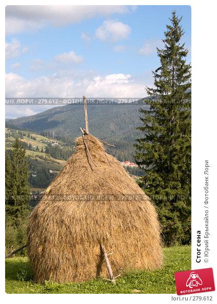 Стог сена, фото № 279612, снято 2 сентября 2007 г. (c) Юрий Брыкайло / Фотобанк Лори