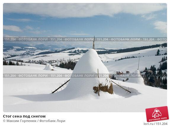 Стог сена под снегом, фото № 151204, снято 21 февраля 2005 г. (c) Максим Горпенюк / Фотобанк Лори
