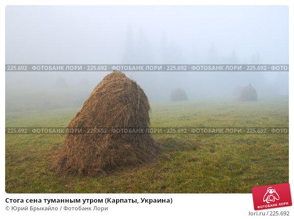 Стога сена туманным утром (Карпаты, Украина), фото № 225692, снято 29 сентября 2007 г. (c) Юрий Брыкайло / Фотобанк Лори