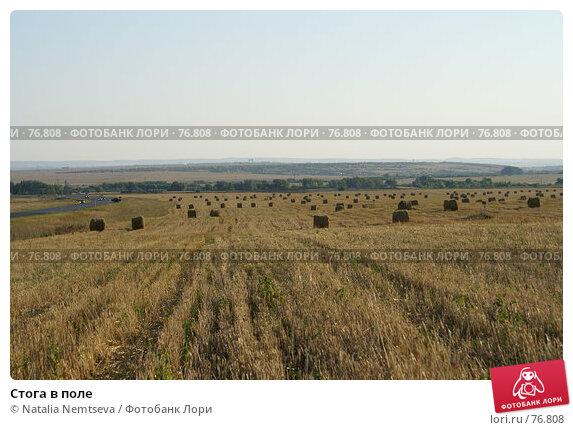 Стога в поле, эксклюзивное фото № 76808, снято 11 августа 2007 г. (c) Natalia Nemtseva / Фотобанк Лори