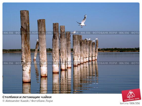 Купить «Столбики и летающие чайки», фото № 806556, снято 15 августа 2006 г. (c) Aleksander Kaasik / Фотобанк Лори