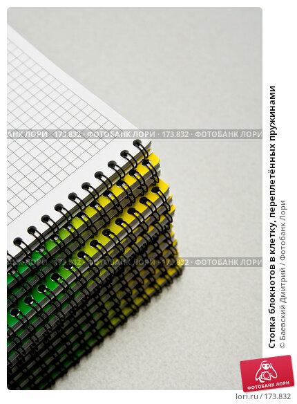 Стопка блокнотов в клетку, переплетённых пружинами, фото № 173832, снято 12 января 2008 г. (c) Баевский Дмитрий / Фотобанк Лори