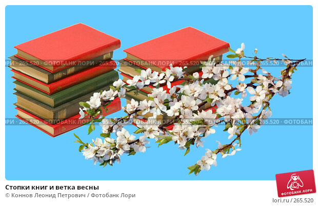 Стопки книг и ветка весны, фото № 265520, снято 26 апреля 2017 г. (c) Коннов Леонид Петрович / Фотобанк Лори