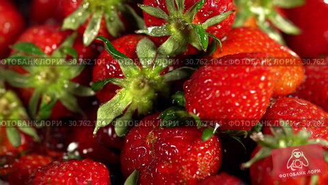 Купить «Strawberry wash of picked freshly berry and green leaves water», видеоролик № 30762104, снято 26 апреля 2019 г. (c) Gennadiy Poznyakov / Фотобанк Лори