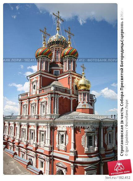Строгановская (в честь Собора Пресвятой Богородицы) церковь в Нижнем Новгороде, фото № 182412, снято 14 декабря 2004 г. (c) Igor Lijashkov / Фотобанк Лори