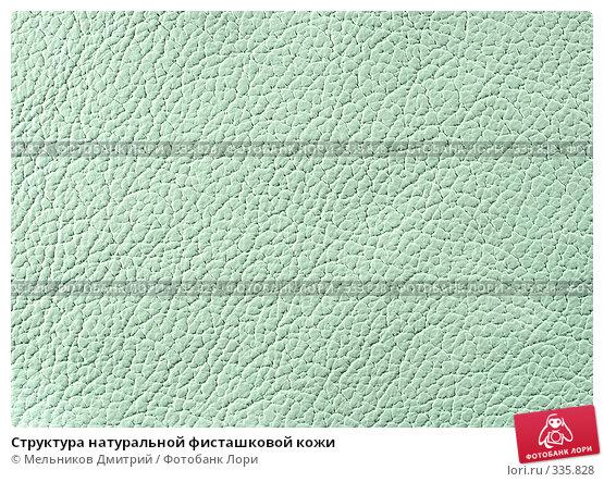 Структура натуральной фисташковой кожи, фото № 335828, снято 11 мая 2008 г. (c) Мельников Дмитрий / Фотобанк Лори