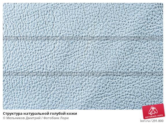 Структура натуральной голубой кожи, фото № 291800, снято 11 мая 2008 г. (c) Мельников Дмитрий / Фотобанк Лори
