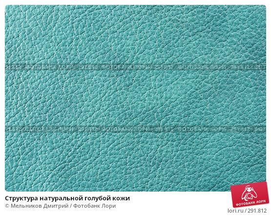 Структура натуральной голубой кожи, фото № 291812, снято 11 мая 2008 г. (c) Мельников Дмитрий / Фотобанк Лори