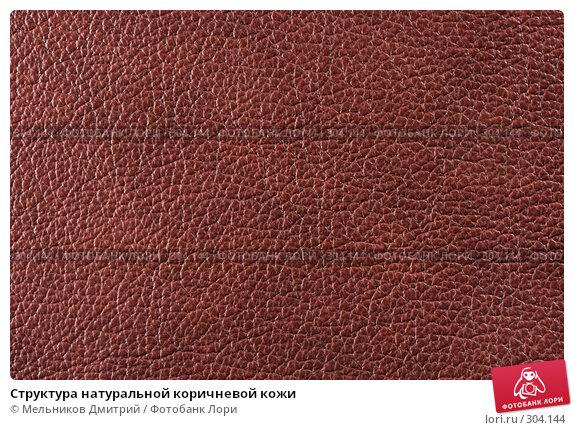Структура натуральной коричневой кожи, фото № 304144, снято 11 мая 2008 г. (c) Мельников Дмитрий / Фотобанк Лори