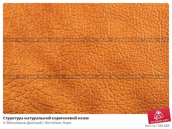 Купить «Структура натуральной коричневой кожи», фото № 335820, снято 11 мая 2008 г. (c) Мельников Дмитрий / Фотобанк Лори