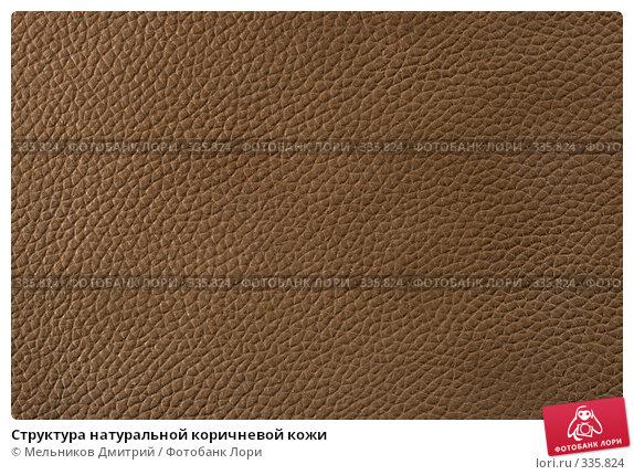 Структура натуральной коричневой кожи, фото № 335824, снято 11 мая 2008 г. (c) Мельников Дмитрий / Фотобанк Лори