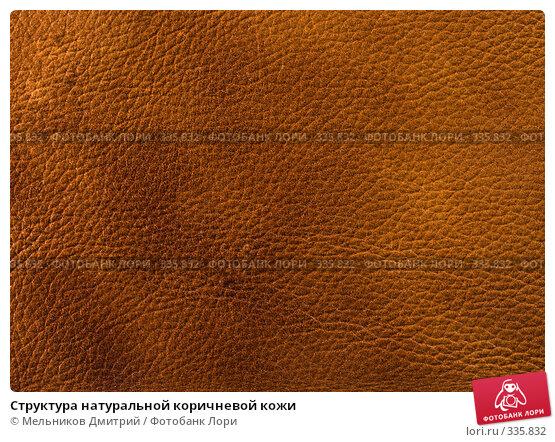 Структура натуральной коричневой кожи, фото № 335832, снято 11 мая 2008 г. (c) Мельников Дмитрий / Фотобанк Лори