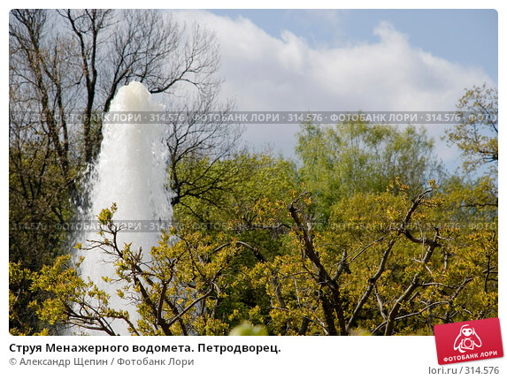 Струя Менажерного водомета. Петродворец., эксклюзивное фото № 314576, снято 16 мая 2008 г. (c) Александр Щепин / Фотобанк Лори