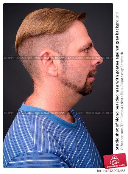 Studio shot of blond bearded man with goatee against gray background. Стоковое фото, фотограф Zoonar.com/Toni Rantala / easy Fotostock / Фотобанк Лори