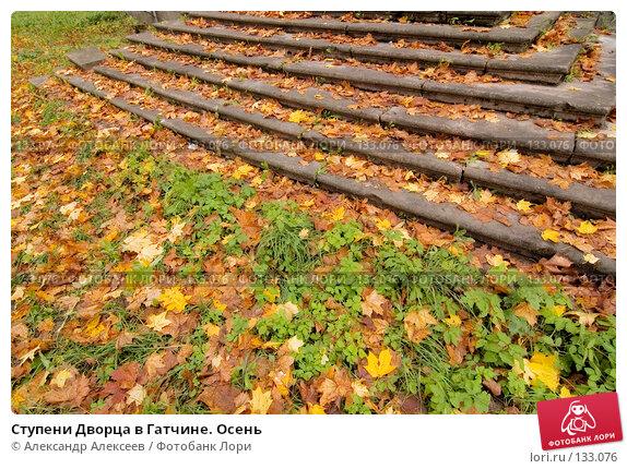 Ступени Дворца в Гатчине. Осень, эксклюзивное фото № 133076, снято 6 октября 2007 г. (c) Александр Алексеев / Фотобанк Лори