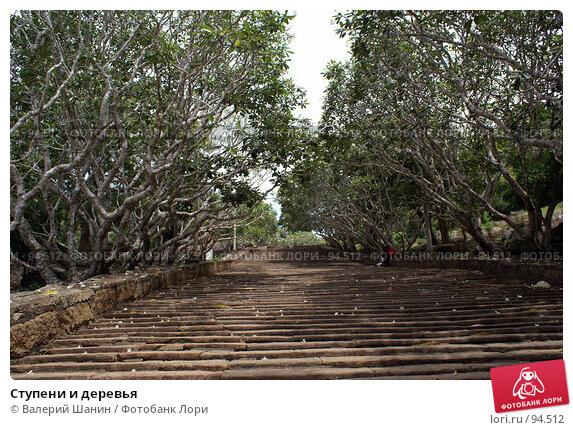 Ступени и деревья, фото № 94512, снято 29 мая 2007 г. (c) Валерий Шанин / Фотобанк Лори