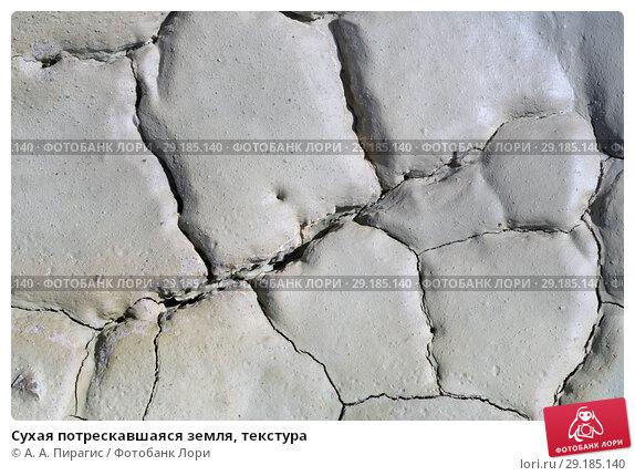 Купить «Сухая потрескавшаяся земля, текстура», фото № 29185140, снято 12 сентября 2018 г. (c) А. А. Пирагис / Фотобанк Лори