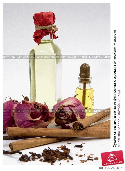Сухие специи, цветы и флаконы с ароматическим маслом, фото № 262616, снято 20 апреля 2008 г. (c) Татьяна Белова / Фотобанк Лори
