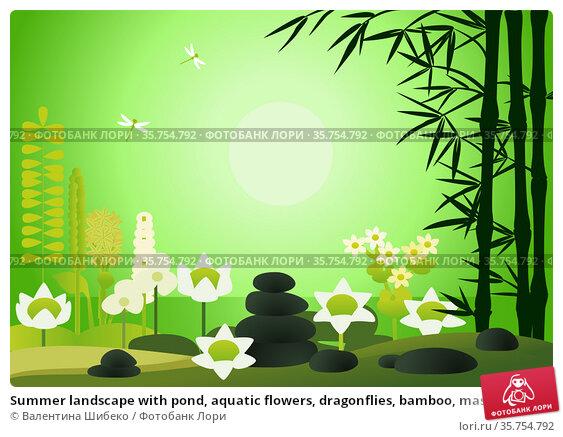 Summer landscape with pond, aquatic flowers, dragonflies, bamboo, massage stones. Стоковая иллюстрация, иллюстратор Валентина Шибеко / Фотобанк Лори