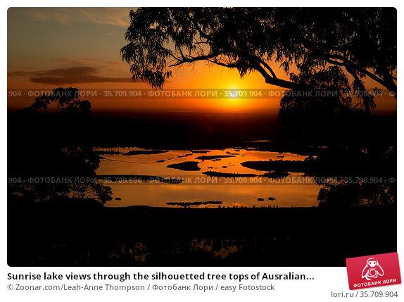Sunrise lake views through the silhouetted tree tops of Ausralian... Стоковое фото, фотограф Zoonar.com/Leah-Anne Thompson / easy Fotostock / Фотобанк Лори