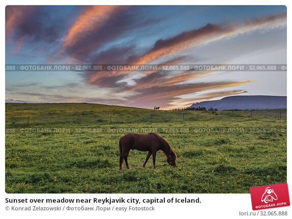 Sunset over meadow near Reykjavik city, capital of Iceland. Стоковое фото, фотограф Konrad Zelazowski / easy Fotostock / Фотобанк Лори