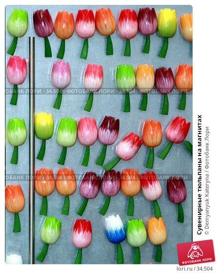 Сувенирные тюльпаны на магнитах, фото № 34504, снято 12 апреля 2007 г. (c) Demyanyuk Kateryna / Фотобанк Лори