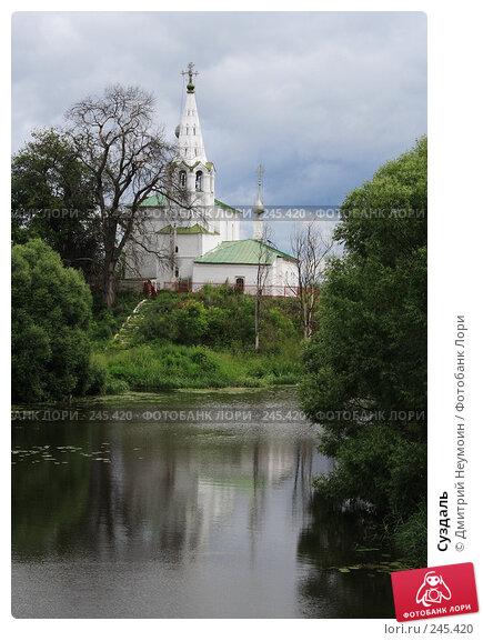 Суздаль, эксклюзивное фото № 245420, снято 1 июля 2006 г. (c) Дмитрий Неумоин / Фотобанк Лори