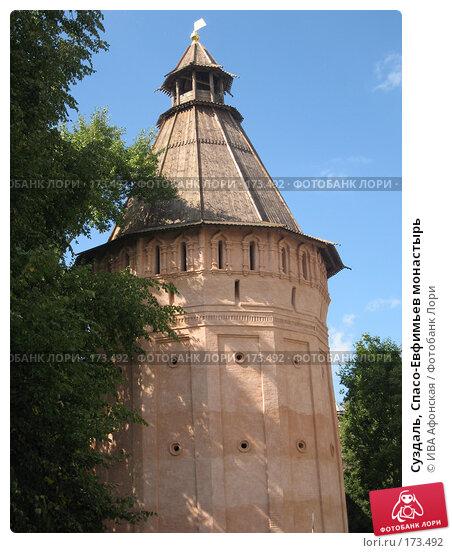 Суздаль, Спасо-Евфимьев монастырь, фото № 173492, снято 18 августа 2006 г. (c) ИВА Афонская / Фотобанк Лори