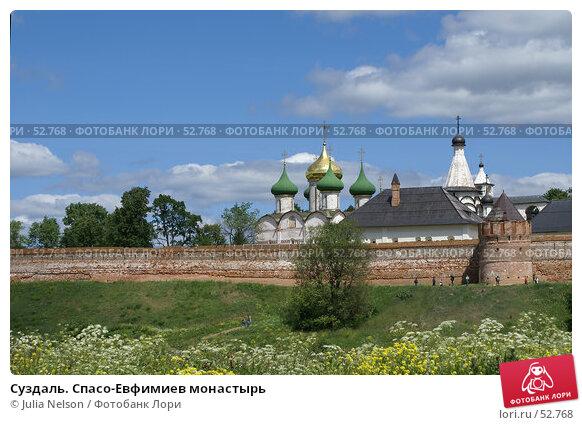 Суздаль. Спасо-Евфимиев монастырь, фото № 52768, снято 11 июня 2007 г. (c) Julia Nelson / Фотобанк Лори