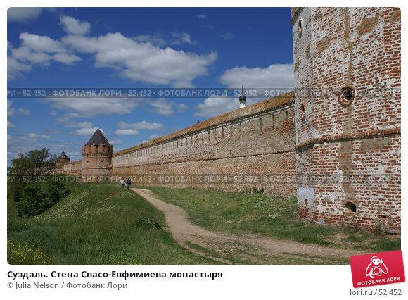 Суздаль. Стена Спасо-Евфимиева монастыря, фото № 52452, снято 11 июня 2007 г. (c) Julia Nelson / Фотобанк Лори