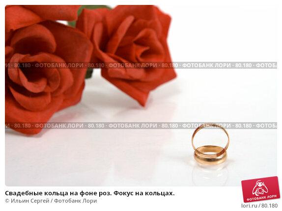 Свадебные кольца на фоне роз. Фокус на кольцах., фото № 80180, снято 15 апреля 2007 г. (c) Ильин Сергей / Фотобанк Лори
