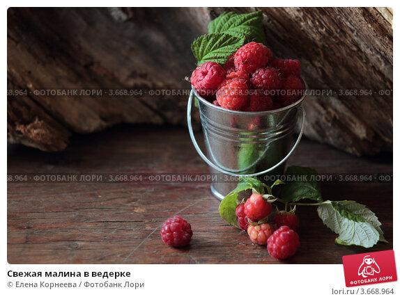 Купить «Свежая малина в ведерке», фото № 3668964, снято 9 июля 2012 г. (c) Елена Корнеева / Фотобанк Лори