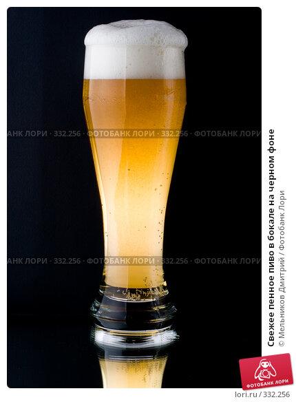 Свежее пенное пиво в бокале на черном фоне, фото № 332256, снято 5 июня 2008 г. (c) Мельников Дмитрий / Фотобанк Лори