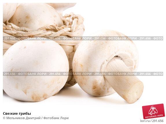 Свежие грибы, фото № 291656, снято 11 мая 2008 г. (c) Мельников Дмитрий / Фотобанк Лори