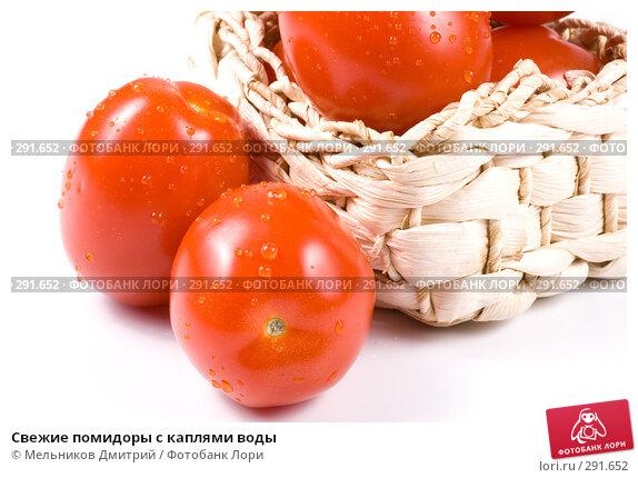 Свежие помидоры с каплями воды, фото № 291652, снято 7 мая 2008 г. (c) Мельников Дмитрий / Фотобанк Лори