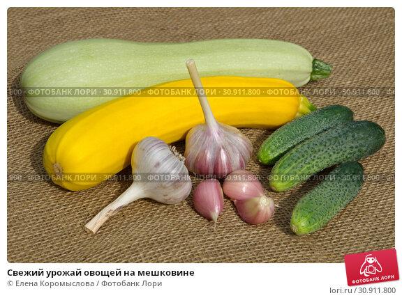 Купить «Свежий урожай овощей на мешковине», фото № 30911800, снято 22 июля 2018 г. (c) Елена Коромыслова / Фотобанк Лори