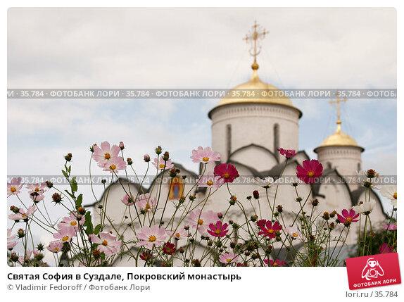 Святая София в Суздале, Покровский монастырь, фото № 35784, снято 13 августа 2006 г. (c) Vladimir Fedoroff / Фотобанк Лори