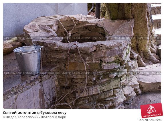 Купить «Святой источник в буковом лесу», фото № 249596, снято 12 апреля 2008 г. (c) Федор Королевский / Фотобанк Лори