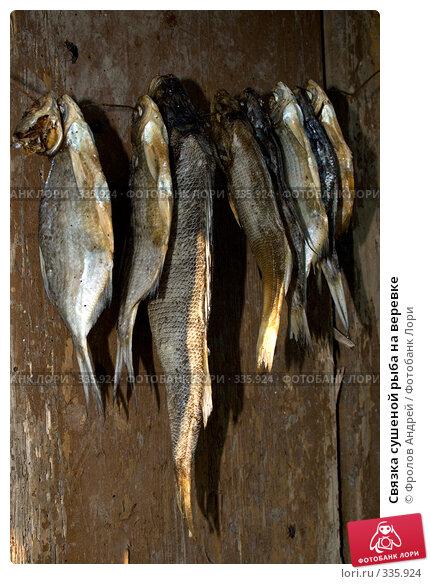 Связка сушеной рыба на веревке, фото № 335924, снято 13 июня 2008 г. (c) Фролов Андрей / Фотобанк Лори