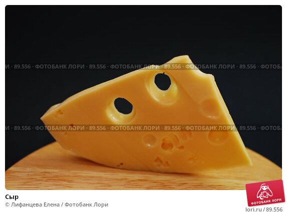 Сыр, фото № 89556, снято 25 сентября 2007 г. (c) Лифанцева Елена / Фотобанк Лори