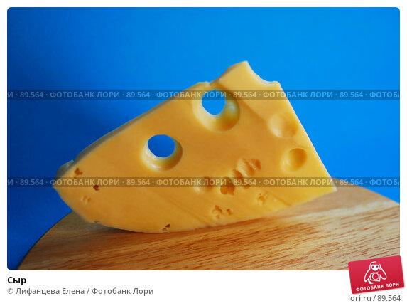 Сыр, фото № 89564, снято 25 сентября 2007 г. (c) Лифанцева Елена / Фотобанк Лори