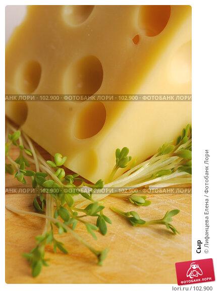 Купить «Сыр», фото № 102900, снято 18 марта 2018 г. (c) Лифанцева Елена / Фотобанк Лори