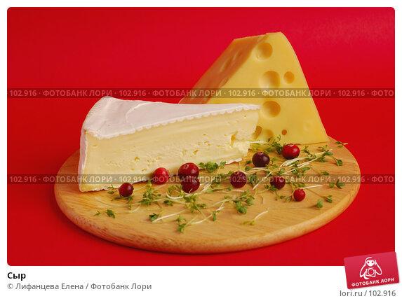 Сыр, фото № 102916, снято 30 мая 2017 г. (c) Лифанцева Елена / Фотобанк Лори